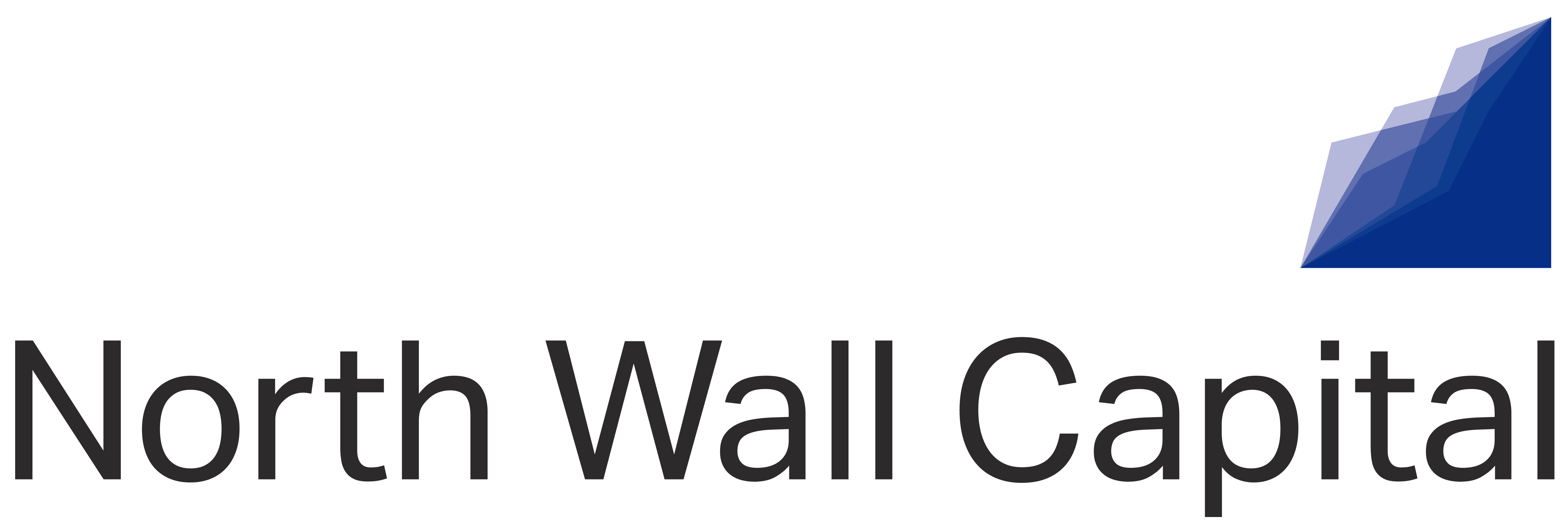Logo zoomed